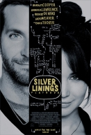 Silver-Linings-Playbook_cover_u